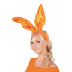 Konijnenoren oranje