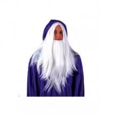 Pruik met baard Tovenaar/Wizard