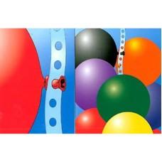 Balloonvine