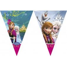 Vlaggenlijn  Frozen
